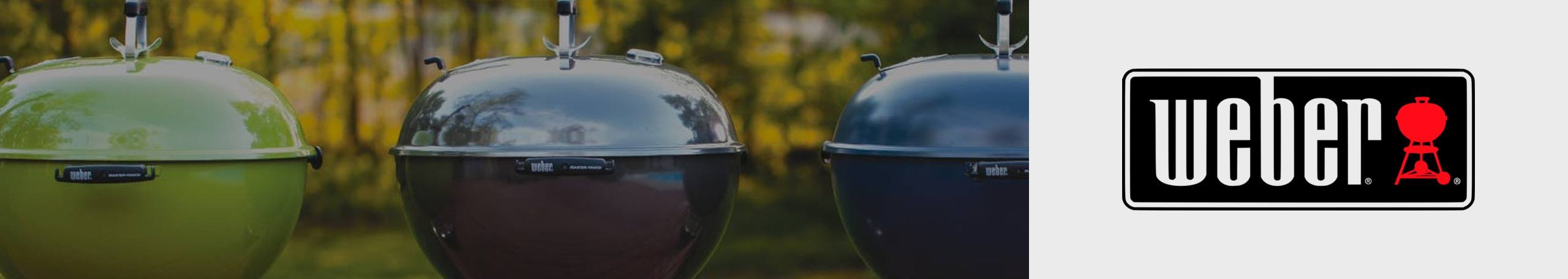 Shop Weber Grills at Horseheads